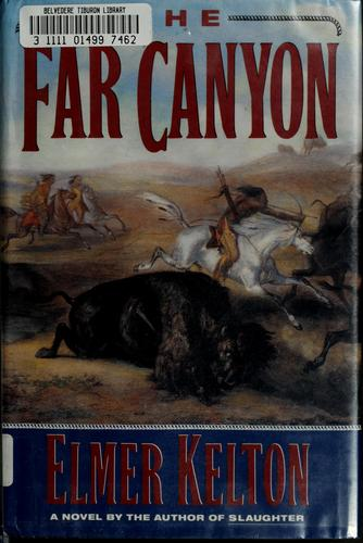 Download The far canyon
