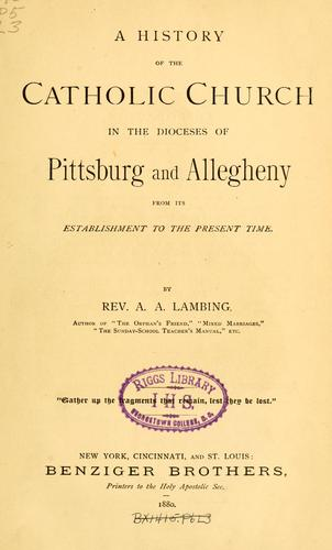A history of the Catholic church in the dioceses of Pittsburg and Allegheny