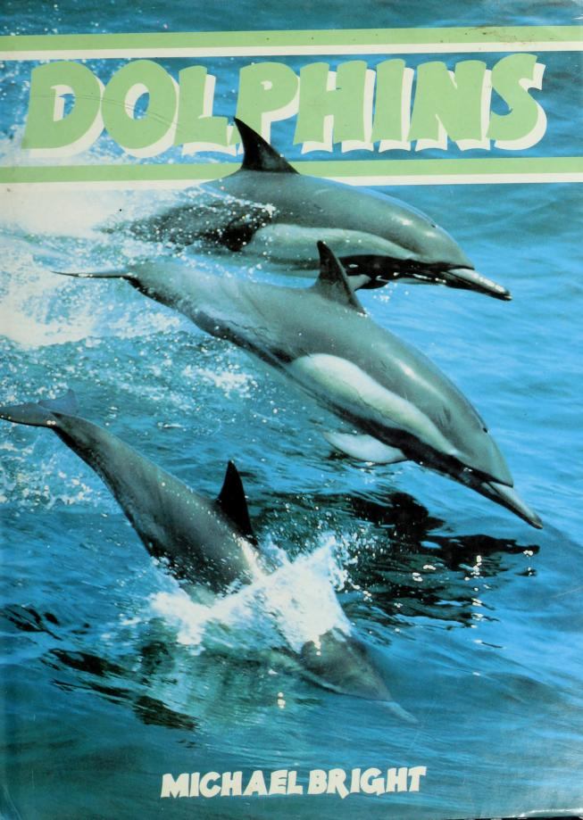 Dolphins by Michael Bright